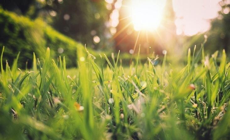 Защити свою кожу от весеннего солнца